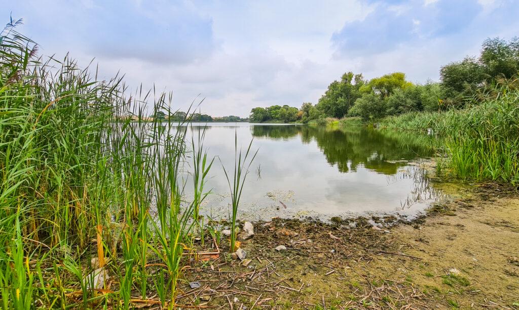jezioro w Randow