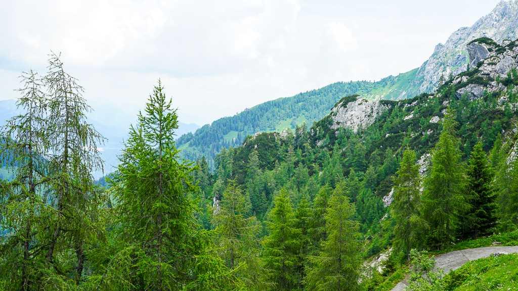 Herbaciarnia na Kehlsteinie – Orle Gniazdo – Niemcy - zejście
